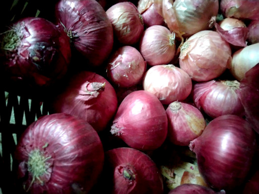 Egyptian onions in Indian market