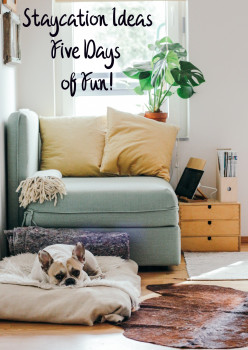 Staycation Ideas: Five Days of Fun!
