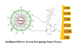 Nanotechnology in Health: Intelligent Delivery Systems for Making Chemotherapy Effective and Safe