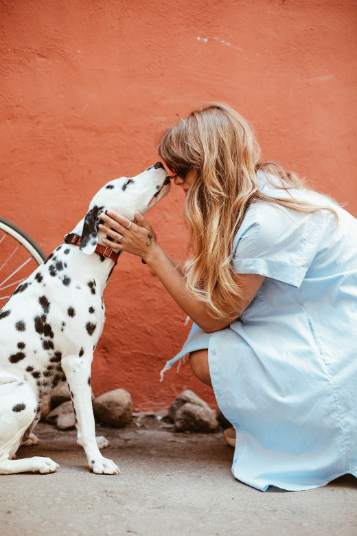 Mutual Dog Human Love