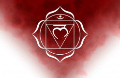 Facts About The Root Chakra