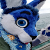 Niko Linni profile image