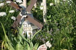 In Spring...the windmill is surrounded by Tulips, Irises and Daffodils. Summer flowers replace these in full glory!
