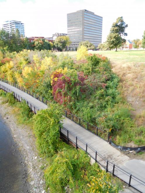 Rivière des Outaouais / Ottawa River, Parc Jacques-Cartier / Jacques Cartier Park, Gatineau, seen from Pont Macdonald-Cartier / Macdonald-Cartier Park