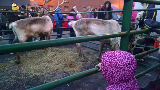 Christmas parade day festivities.
