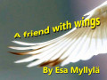 A Friend With Wings