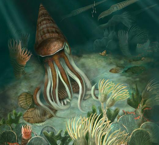 Ordovician Extinction