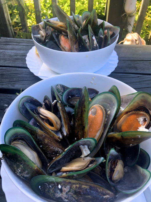 1 kilo plate of mussels each at Havelock
