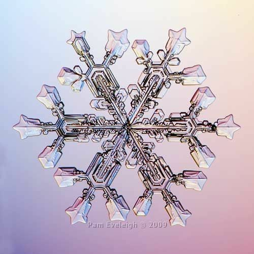 Each snowflake is a mirror in miniature.