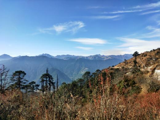 A green mountain range, Chele La