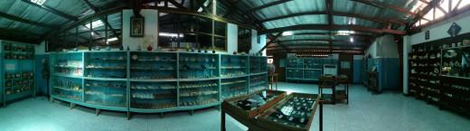 Inside the Nova Shell Museum.