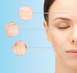 Collagen: The Building Blocks of Skin