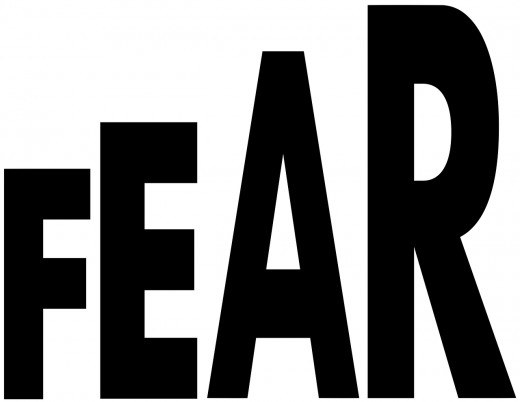 Terrorism is based on fear -- Terrorphobia is based on fear