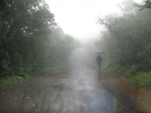 Beautiful view of Rainfall in Mahabaleshwar