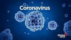What I Am Doing in 2020 Amid the Coronavirus