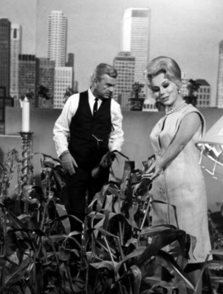 """Albert """"Oliver Douglas,"""" and Eva Gabor, """"Lisa,"""" his wife, look at his farm that he tended on his patio in New York City."""