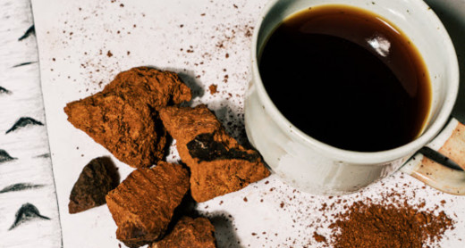 Despite being full of anti-inflammatory compounds, Chaga tea does not suppress the immune system and possesses natural antiviral properties.