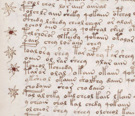 Detail from page 107r of Voynich Manuscript