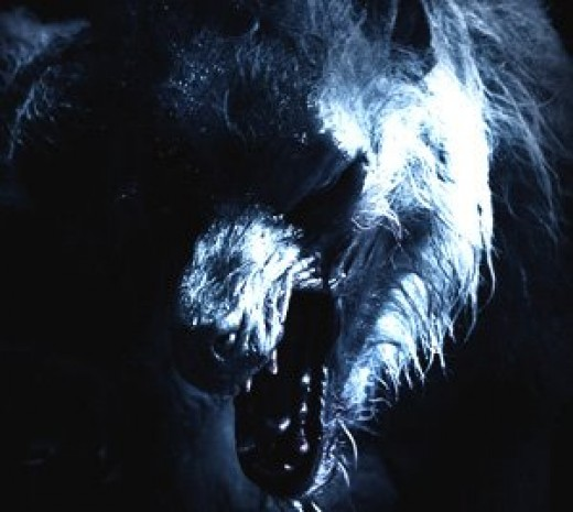 Scary Lycan werewolf head photo.