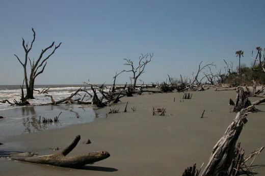 South Carolina Barrier Islands