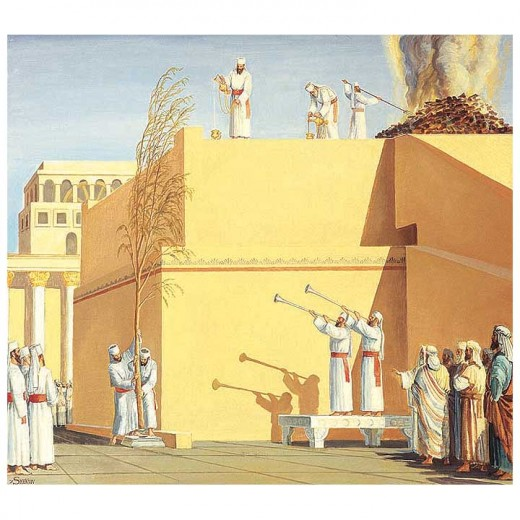 http://www.templeinstitute.org
