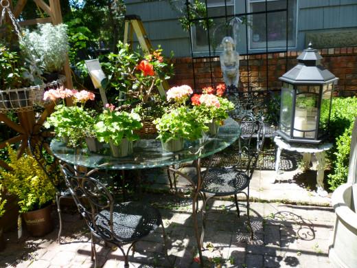 Plants displayed among other items