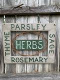 Growing an Herb Garden Indoors