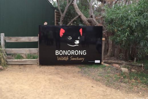Bonorong Wildlife Sanctuary