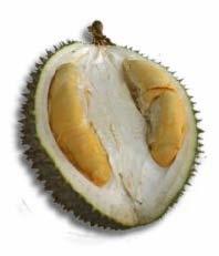 Ang Heh (Red Prawn Durian)