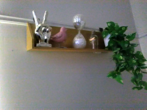 Kmart super cheap shelving I hand painted gold