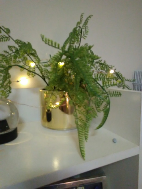Kmart potted plant in gold bowl