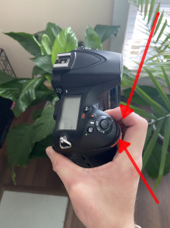 How to Master Aperture (F-Stop) and Take Photos Like a Pro