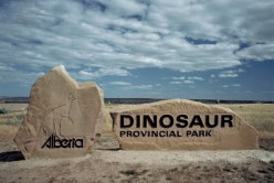 Best Explorations for Kids: Dinosaur Provincial Park