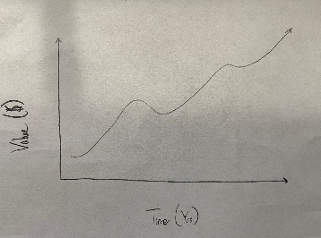 A theoretical model of a companies value over time.