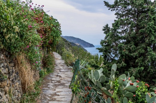 The trail to Vernazza