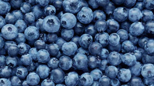 Back in the year 1988, fresh blueberries cost $1.19 a pint.