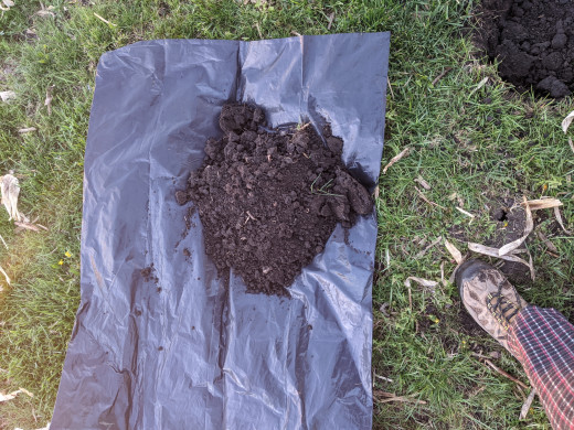 remove dirt in hole to plastic bag