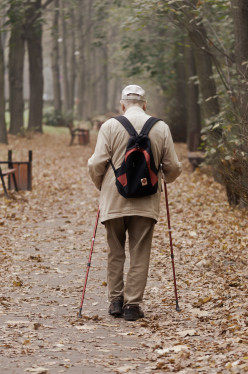 How can Aged Population have an Independent Living?