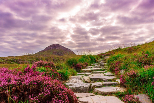 A lovely hill walk somewhere in Ireland