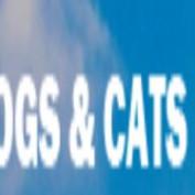 dogsandcatshq profile image