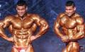Top Indian Bodybuilders