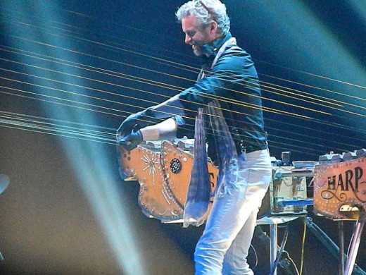 Earth Harp has appeared at SDC  before. Will we get to see other acts such as these in 2020?