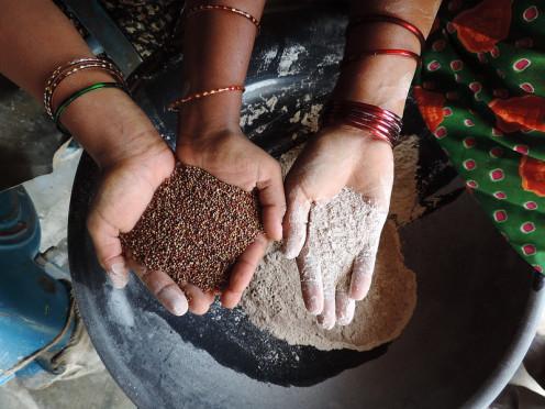 Ragi and Ragi flour