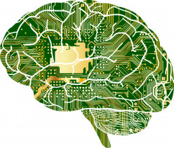 Dementia - Cognitive Decline