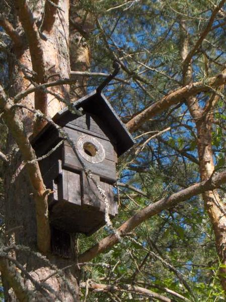 This birdhouse that is weather-beaten still has perfect 45-degreee cuts.