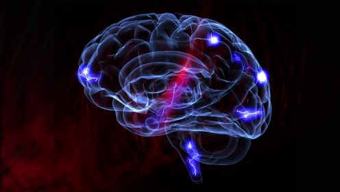 Changes in Neurotransmitter Levels
