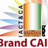 BrandCai profile image