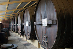 Huge wine barrels.
