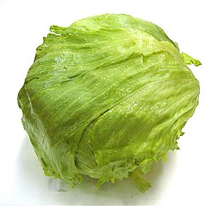 iceberg salad the most important ingredient used in salad