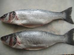 Fish Recipes - 1